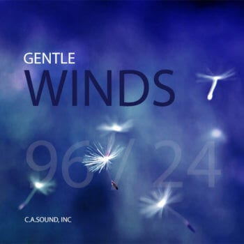 Wind | Sound Effects Library Tags | Sonniss com